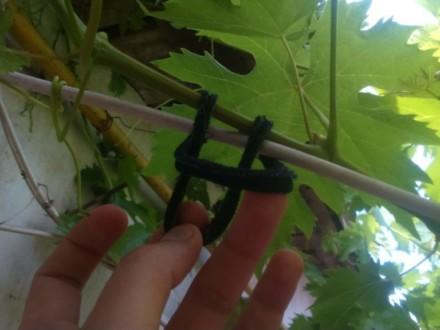 кембрик для подвязки винограда купить, подвязка винограда купить, агротрубка пвх для подвязки, bandofix купить, трикотажные кольца для подвязки винограда, кительная обрезь